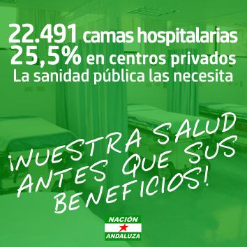 Nación Andaluza ante la crisis sanitaria por el Covid-19